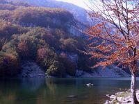 autunno1