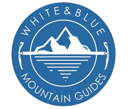 logo white and blue